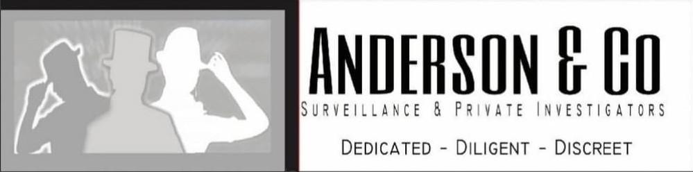 Anderson & Co Surveillance & Private Investigator review